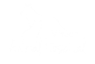 Minden Animal Hospital
